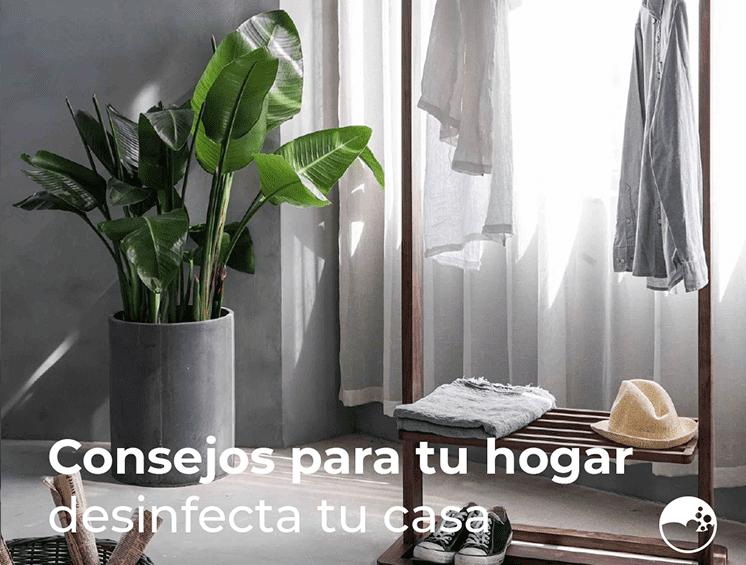 Consejos de hogar desinfecta tu casa