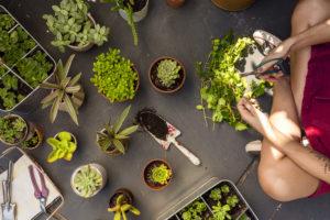 Cómo lavar la ropa almacenada en tu segunda vivienda, plantas