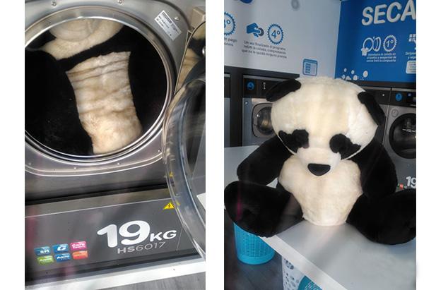 lavar peluche lavanderia autoservicio lavalux